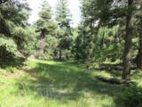 2450 Elk Park Road - Photo 17
