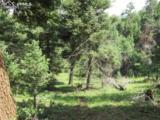 2450 Elk Park Road - Photo 19