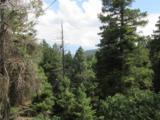 2450 Elk Park Road - Photo 23