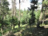 2450 Elk Park Road - Photo 5