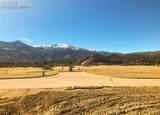 2954 Treeline View - Photo 2