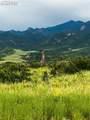 2954 Treeline View - Photo 3