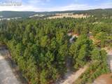 18823 Smokey Pine Road - Photo 11