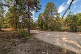 18823 Smokey Pine Road - Photo 37