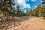 18823 Smokey Pine Road - Photo 8
