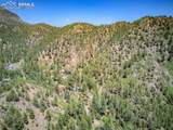1070 Rock Creek Canyon Road - Photo 11