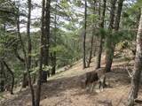 2255 Elk Park Road - Photo 26