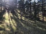 9960 Mesa Road - Photo 8