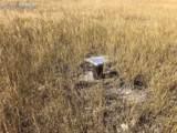 0 Hart Ranch Drive - Photo 8