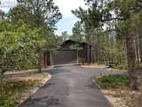 17555 Shiloh Pines Drive - Photo 3