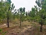 7165 Mcshane Road - Photo 9