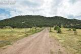 6650 County Road 132 - Photo 6