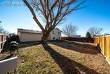 7340 Painted Rock Drive - Photo 29
