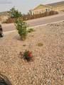 6582 Gelbvieh Road - Photo 5