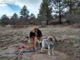 425 Navajo Drive - Photo 12