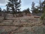 425 Navajo Drive - Photo 13