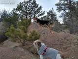 425 Navajo Drive - Photo 14