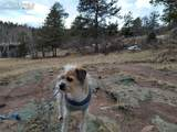 425 Navajo Drive - Photo 4