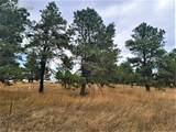17274 Abert Ranch Drive - Photo 10