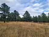 17274 Abert Ranch Drive - Photo 11