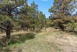 17274 Abert Ranch Drive - Photo 14