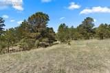 17274 Abert Ranch Drive - Photo 15