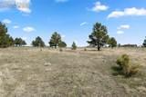 17274 Abert Ranch Drive - Photo 16