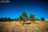 17274 Abert Ranch Drive - Photo 5