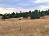17274 Abert Ranch Drive - Photo 6