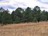 17274 Abert Ranch Drive - Photo 7
