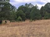 17274 Abert Ranch Drive - Photo 8