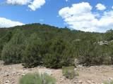 142 Dora Mountain Road - Photo 14