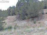 142 Dora Mountain Road - Photo 22