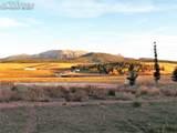 411 Meadow Park Drive - Photo 42