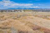 6971 Mountain Spruce Drive - Photo 49