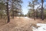 15364 Pole Pine Point - Photo 25