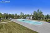 455 Bayou Gulch Circle - Photo 41