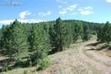 Peakview Ridge - Photo 13