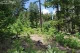 Peakview Ridge - Photo 14