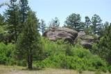 Peakview Ridge - Photo 16