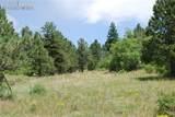 Peakview Ridge - Photo 17