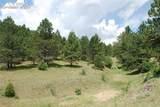Peakview Ridge - Photo 19