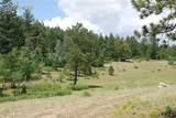 Peakview Ridge - Photo 22