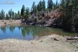 Peakview Ridge - Photo 23