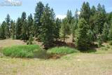 Peakview Ridge - Photo 25