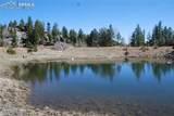 Peakview Ridge - Photo 28