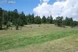 Peakview Ridge - Photo 29