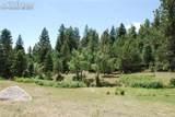 Peakview Ridge - Photo 30