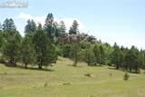 Peakview Ridge - Photo 31