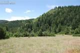 Peakview Ridge - Photo 33